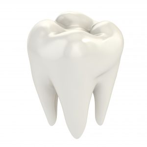 white tooth cusp and enamel